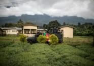 """Villageois tués au Cameroun anglophone: """"un malheureux accident"""" dit l'armée"""