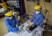 En Afrique du Sud, des médecins mettent au point une boîte pour isoler les malades du Covid-19