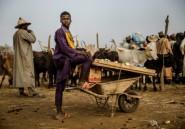 Escalade inquiétante des violences dans le nord-ouest du Nigeria