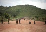 Centrafrique: un groupe armé suspend sa participation