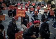 Afrique du sud: la gauche radicale manifeste contre le racisme