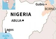 Nigeria: 69 morts lors d'une attaque jihadiste, selon un nouveau bilan