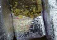 Plus de sept tonnes de résine de cannabis saisies au Maroc