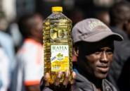 Le Zimbabwe plus que jamais au fond du trou