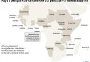 Au Gabon, la dépénalisation de l'homosexualité votée après trois semaines agitées