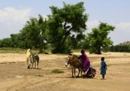 Soudan: une nouvelle tuerie fait plus de 60 morts au Darfour