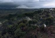 RDC: crash d'une avionnette dans le parc de Kahuzi-Biega