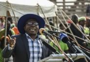 Zimbabwe: libération sous caution de l'opposant Jacob Ngarivhume
