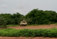 Niger: la réserve des girafes menacée, après une attaque jihadiste