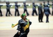 Afrique du Sud: une ministre réprimandée pour mélange des genres