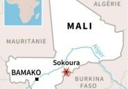 Au moins 24 personnes, dont 12 civils, tuées au Mali