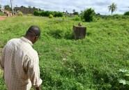 Présidentielle en Côte d'Ivoire: dix ans après, l'Ouest toujours une poudrière