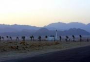 Sinaï égyptien: deux touristes enlevés par des bédouins