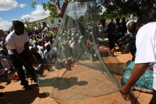 Des militants associatifs posent une moustiquaire au Zimbabwe en février 2009 pour protéger la population du paludisme AFP/Archives Alexander Joe