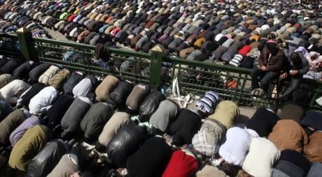 La prière vendredi 4 février sur la place Tahrir au Caire Suhaib Salem / Reuters