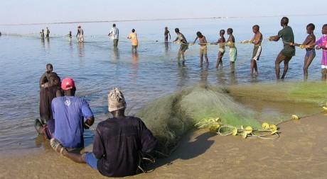 Des pêcheurs du delta du fleuve Sénégal, by eutrophication&hypoxia via Flickr CC