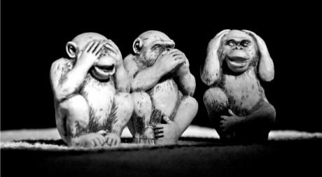 Three wise monkeys, by Anderson Mancini via Flickr CC