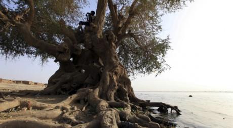 Le Nil à Khartoum, au Soudan. REUTERS/Str New