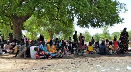 Des déplacés soudanais s'abritent sous les arbres à Agok. © Maryline Dumas