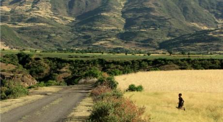 Fields of Bilbilla Chirkos, by DamienHR via Flickr CC
