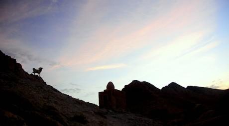 L'oasis de montagne de Chebika près de Tozeur en Tunisie by Kamil Porembiński via Flickr CC