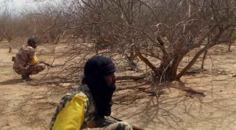 Soldats maliens patrouillant dans la forêt de Wagadou (frontière Mali/Mauritanie)  © Serge Daniel