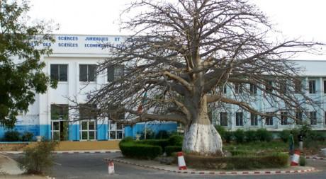 L'université Cheikh Anta Diop, Dakar, by Serigne Diagne via Flickr CC