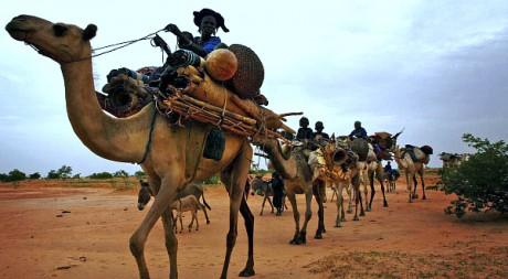 Une caravane touareg dans le Sud du Niger. REUTERS/Finbarr O'Reilly
