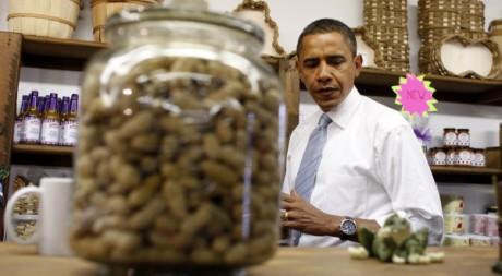 Obama dans une boutique qui vend des cacahuètes à Petersburg, en 2008. REUTERS/Jim Young