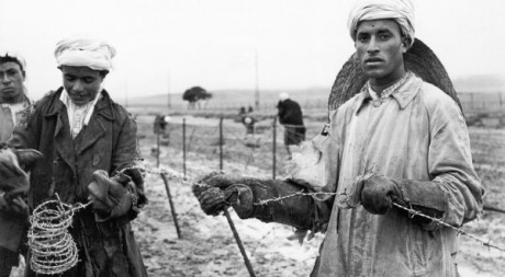 Des ouvriers algériens construisent la ligne Morice, le 16 décembre 1957, pendant la guerre d'AlgérieAFP/INTERCONTINENTALE