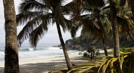 La plage de Grande sur l'île de La Réunion. REUTERS/Charles Platiau