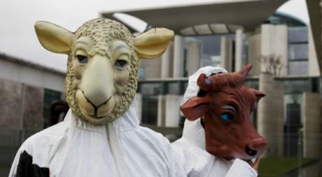 Des activistes manifestent contre la viande halal et casher à Berlin le 5 janvier 2012.Reuters/Thomas Peter