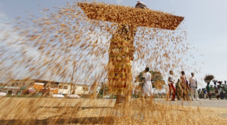 Séparer le bon grain de l'ivraie. Duékoué, en Côte-d'Ivoire, le 30 avril 2011. REUTERS/Thierry Gouegnon