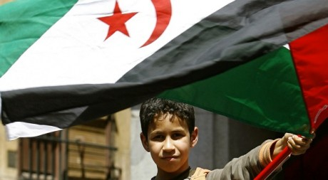 Un jeune manifestant avec le drapeau sahraoui, Madrid, 21 avril 2007. REUTERS/Andrea Comas