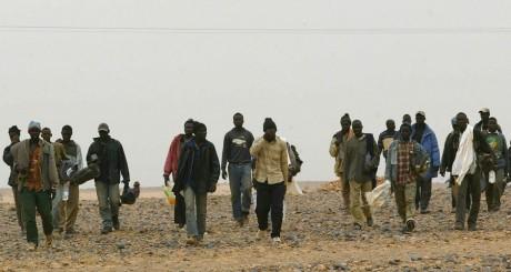 Migrants subsahariens près d'Argelia, octobre 2005 / AFP