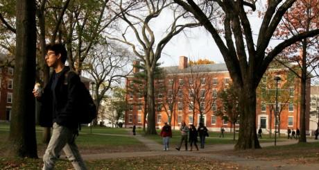 Le campus de Harvard, novembre 2012 / REUTERS