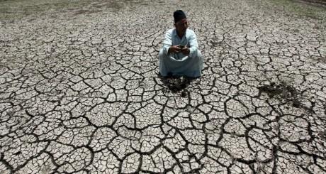 Un paysan égyptien constate la sécheresse à Al-Dakahlya, le 5 juin 2013. REUTERS/Mohamed Abd El Ghan