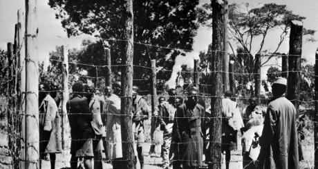 Prisonniers Mau Mau, réserve de Kikuyu, Kenya, 1952 / AFP
