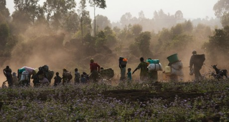 Déplacés congolais fuyant les combats à Goma, 15 juillet 2013 / AFP