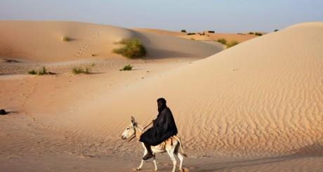 Un berger malien, Tombouctou, juillet 2013 / REUTERS