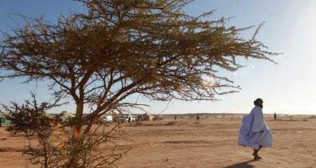 Un Sahraoui, à Tifariti / REUTERS