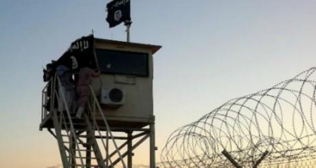 Ansar beït al-Maqdess a annoncé avoir fait allégeance à Da'ech / AFP