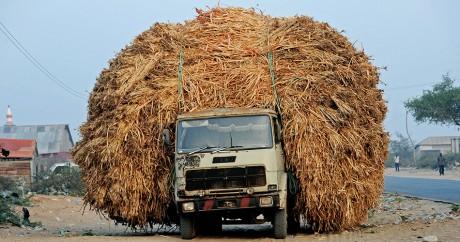 Contrairement aux poches des Somaliens, les camions sont chargés. Crédit photo: MOHAMED ABDIWAHAB / AFP