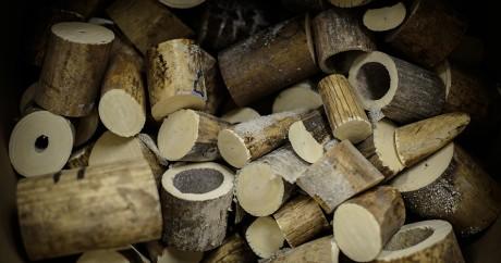 De l'ivoire saisi à des trafiquants à Hong-Kong. PHILIPPE LOPEZ / AFP