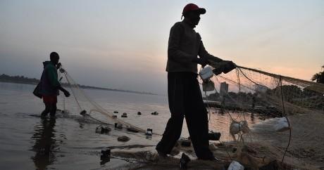 Un pêcheur prépare ses files sur le fleuve Ubangui, le 1er janvier 2016. ISSOUF SANOGO / AFP