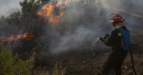 Un pompier éteint un incendie le 4 janvier 2017 à proximité de Cape Town. RODGER BOSCH / AFP