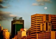 Les nouveaux bobos de Johannesburg