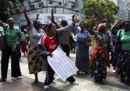 A quoi servent les sanctions contre le Zimbabwe?