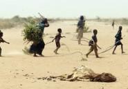 La famine est un crime contre l'humanité