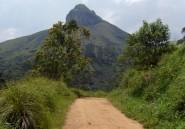 Cameroun, en attendant les touristes chinois